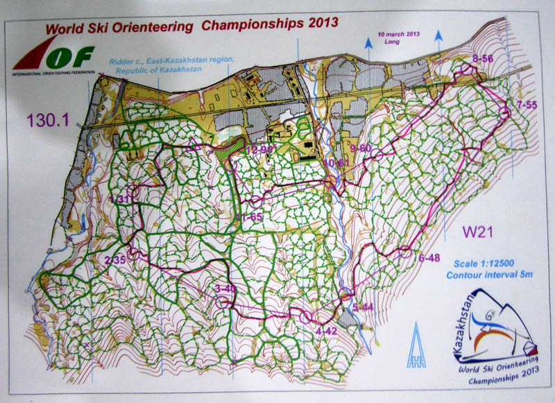 Ski WOC long, map 1 (of 3) (10/03/2013)